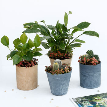 Wei Lu Simple Flower Plastic Resin Plant Flower Pot Lightweight and Durable Potted Floor to Home Balcony Gardening Pot