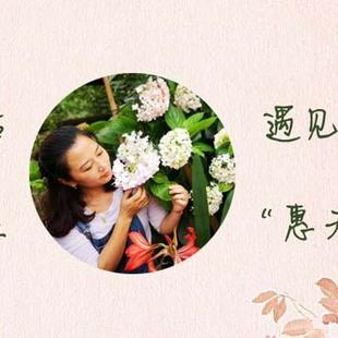 除了蝴蝶兰,还有谁是兰花界的颜值担当?