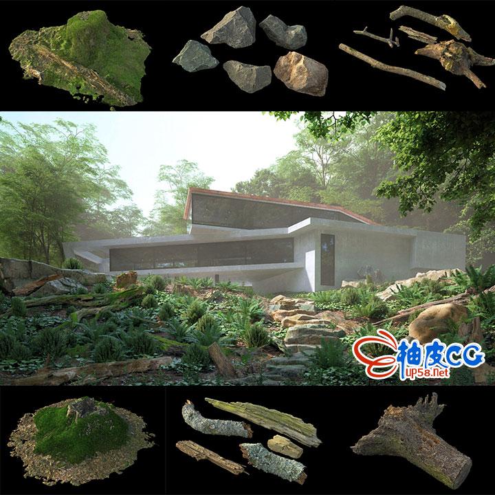 3dsmax VRay树枝树干树桩岩石精细3D模型