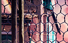 Châu âu và Hoa Kỳ tide thương hiệu cao đường phố VINTAGE retro thể thao quần trường quần nam giới và phụ nữ mô hình OLD SCHOOL ruồi chết