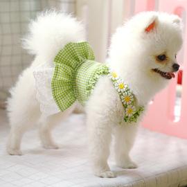 Váy cho thú cưng