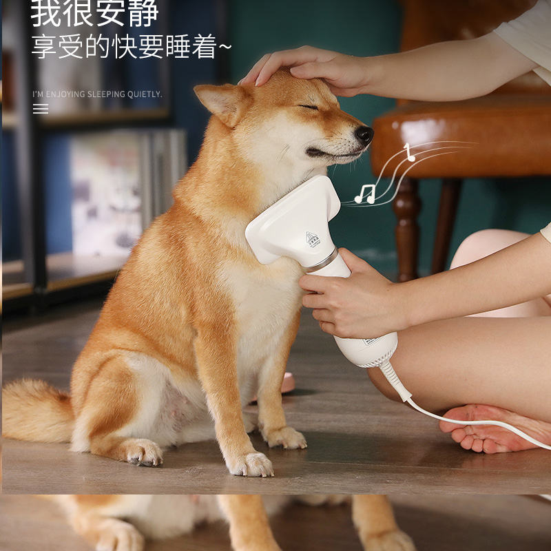 Pet hair dryer dog cat blowing hair mute high power small large dog blow drying bath hair pulling artifact