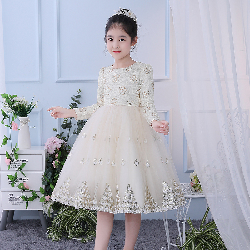Girls autumn and winter dresses 2019 new velvet little girl dress princess skirt tulle skirt