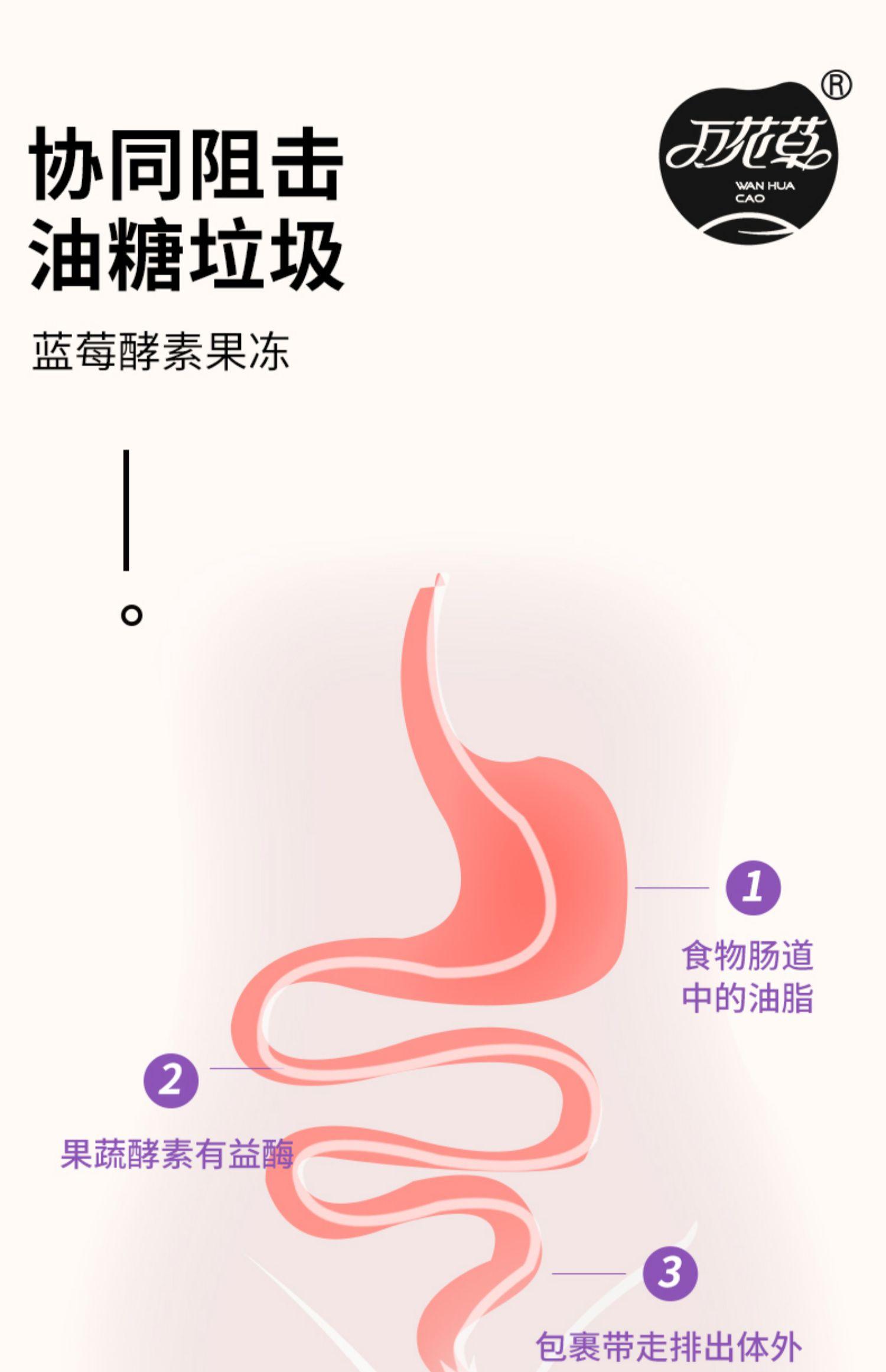 【万花草】益生元蓝莓酵素果冻7条10