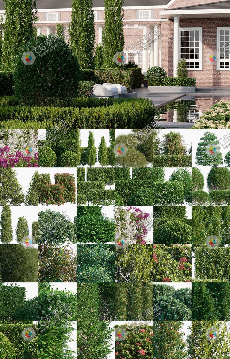 98组高质量观赏性景观植物绿篱花园栅栏3D模型