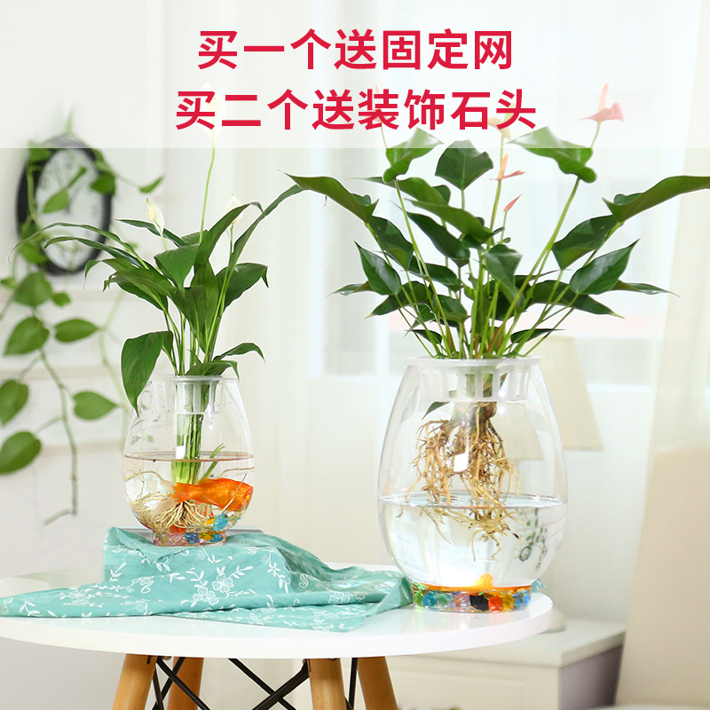 Transparent Glass Flower Pot Small Fresh Green Water Hydroponic Dry