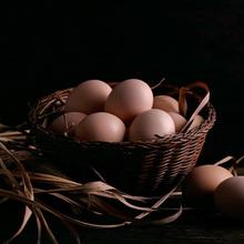 【百年栗园】AA+级油鸡土鸡蛋