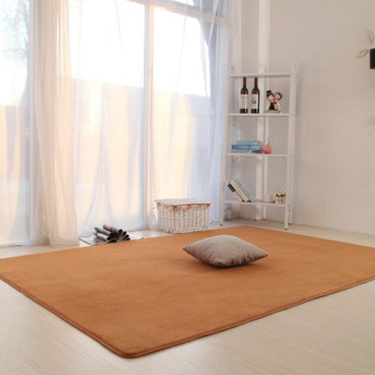 Carpet living room bedroom full bed blanket coffee table solid color carpet pad simple modern Nordic style rectangular European style