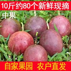 Маракуйя Guangxi passion fruit 10