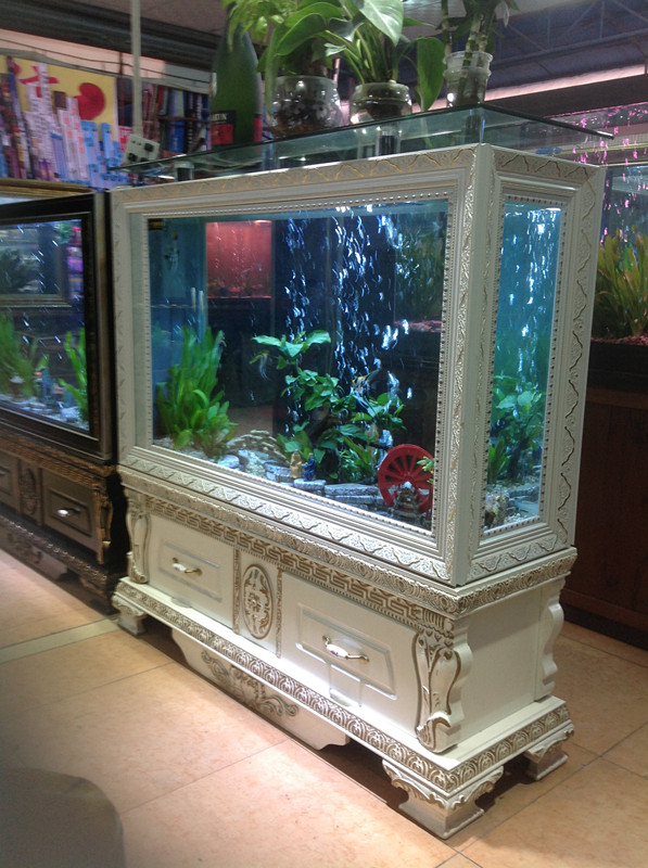how to partition fish tank