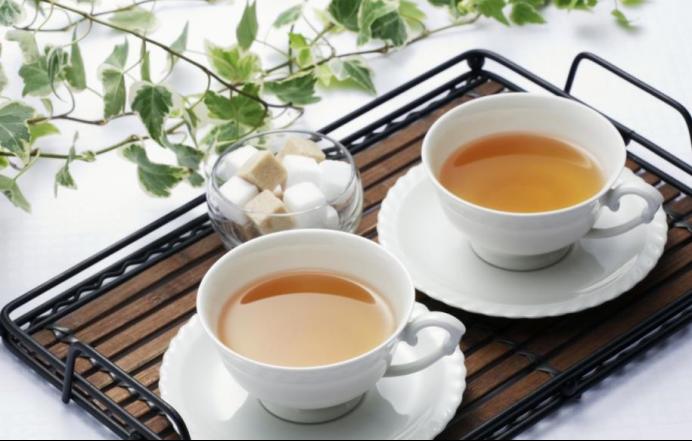 开启健康茶饮养生之道,茶叶你选对了吗?10