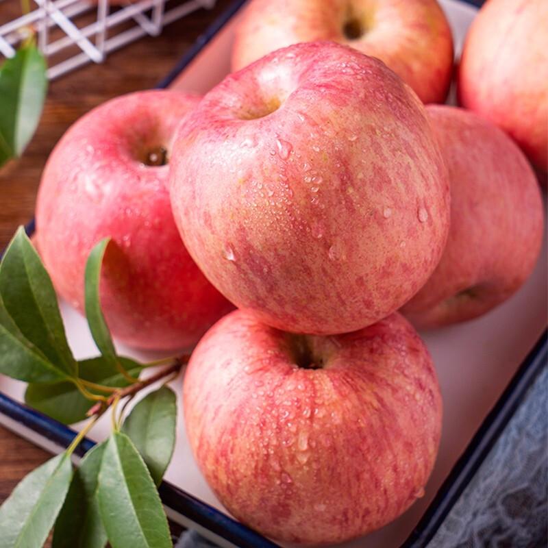【5斤大果】灵宝精品有机红富士苹果