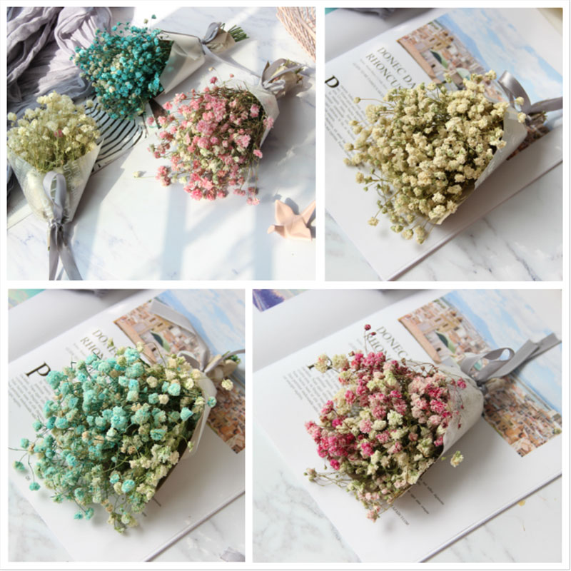 Gypsophila dried flowers ins photo props nail art props holding ...