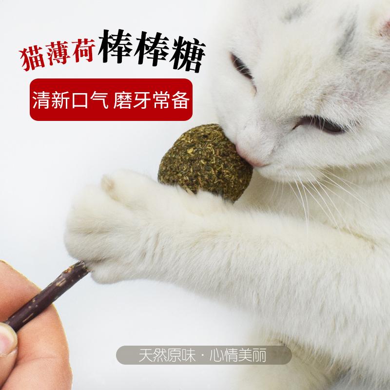 Mu Tian Li Stick Cat Snacks Cat Cung cấp Molar Stick Bàn chải đánh răng Stick Hairball Giúp tiêu hóa Catnip 6 - Đồ ăn nhẹ cho mèo