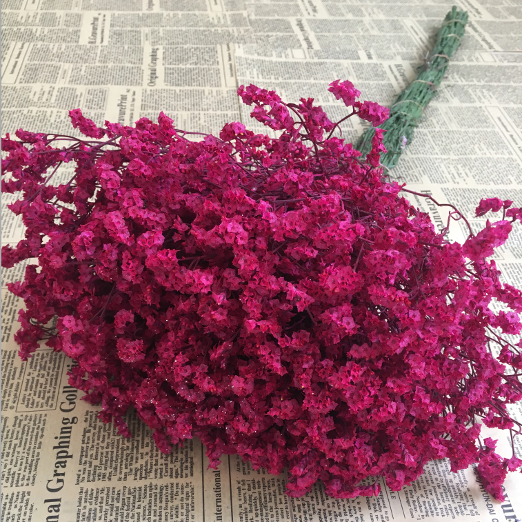 Dried flower bouquet dried yunnan natural dried flowers forget me dried flower bouquet dried yunnan natural dried flowers forget me not real flower living room flower arrangement decoration flower lover grass star mightylinksfo