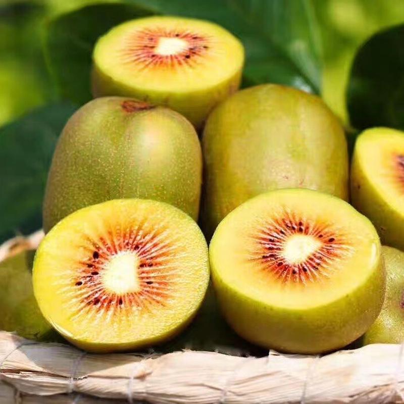 四川浦江红心猕猴桃当季整箱新鲜水果包邮孕妇应季现摘小果奇异果