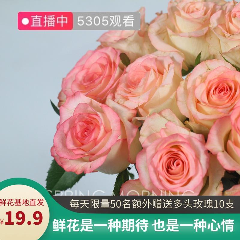 云南鲜花直批玫瑰花一扎20支包邮家用水养插花鲜切花基地直供AAAA