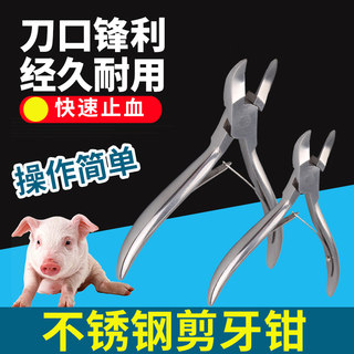 Dr. Pig Piglet Stainless Steel Scissors Pliers for Pigs Teeth Cutters for Veterinary Pigs Scissors for Pigs