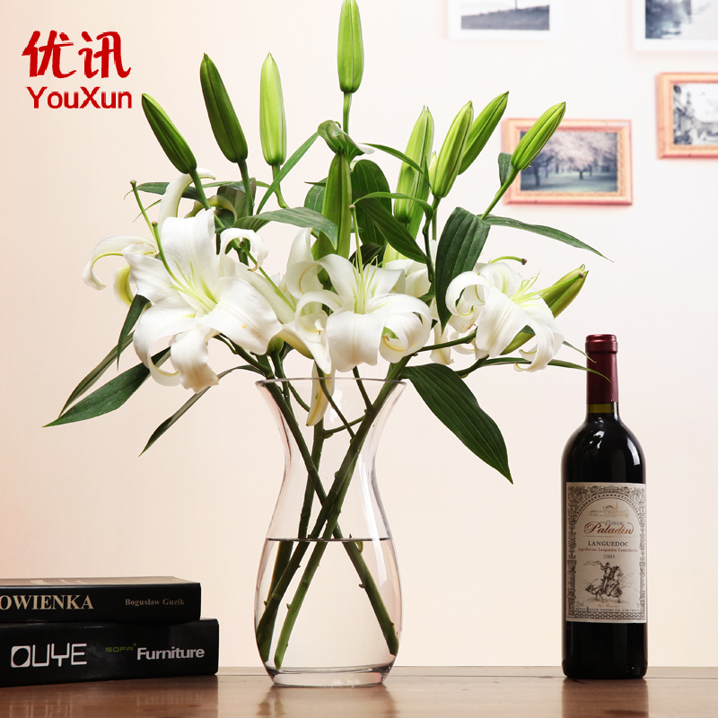 Hydroponics Transparent Glass Vase Flowers Simple And Stylish Countertops Living  Room Floral Arrangement Bottle Of Lily