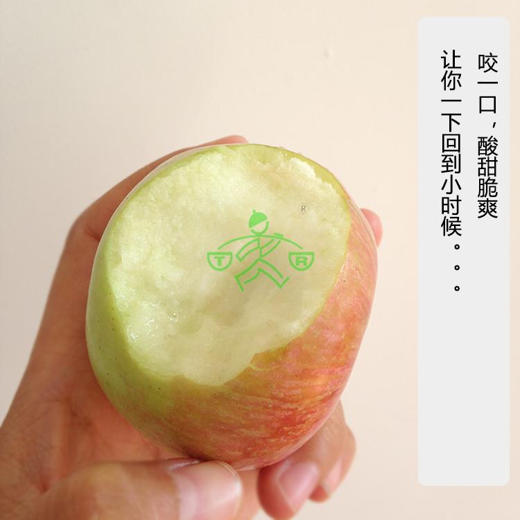 老品种小国光丑苹果烟台不套袋农家自产小时候的味道4.6-5斤包邮
