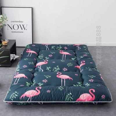 Thicken feather velvet mattress bed scorpion tatami mattress double tile pad foldable single double bed