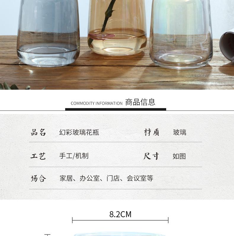 极光幻彩渐层简约小花瓶玻璃插花花器水培植物玻璃瓶日式桌面摆件详细照片