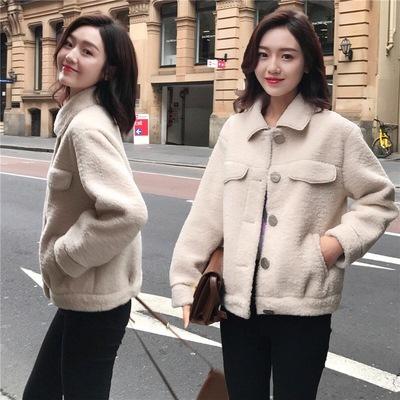 2019冬季新款韩版单排扣小个子短款仿羊羔毛外套女学生宽松上衣女