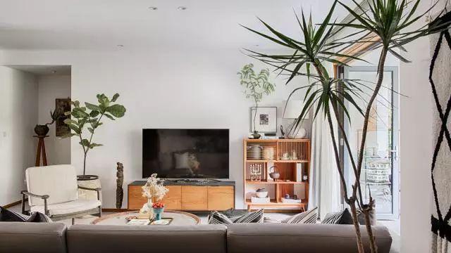 原来绿植可以这样摆放,瞬间弥补家中缺点