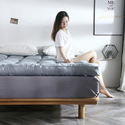 Feather velvet rental room soft cushion special 1.8m tatami mattress thicker mattress pad quilt single double to keep warm