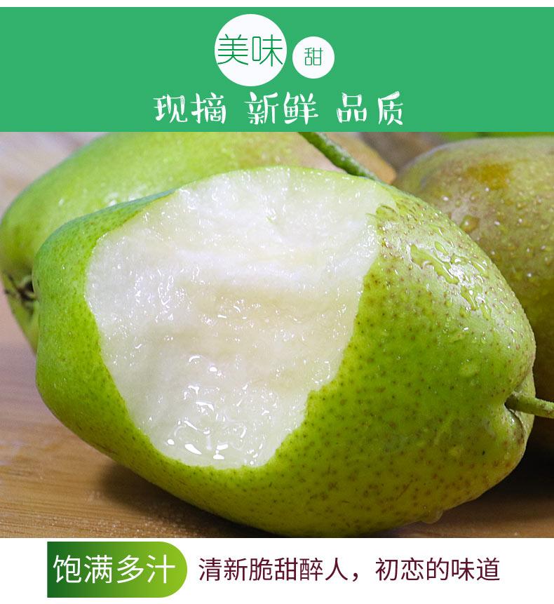 红香酥梨水果新鲜当季斤香梨应季山西脆甜多汁梨子批整箱包邮详细照片