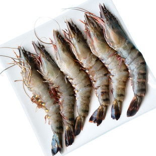 [photo three] Vietnam imported black tiger shrimp 1200g