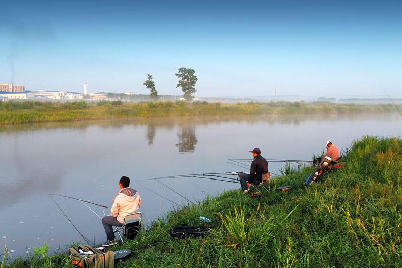 夏钓草鱼的钓法大解析,轻松上大鱼!