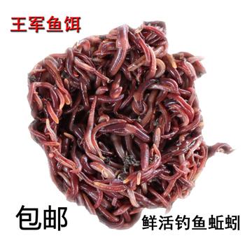 Червяк живая приманка живая тело свежий живая рыбалка приманка красный червяк масса упакованный желтый китайский желтый угорь приманка черный червяк мотыль король армия, цена 134 руб