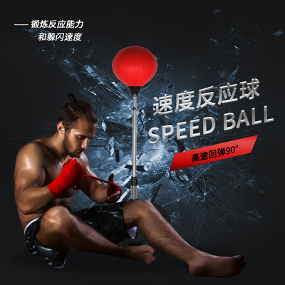 Boxing ball speed ba...