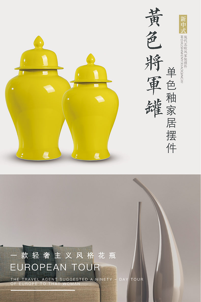 Modern Chinese style household furnishing articles general as cans ceramic vase, large home sitting room porch ark, dry flower arrangement