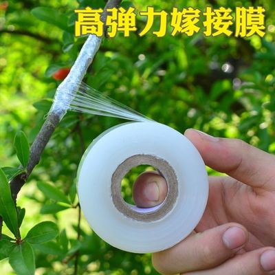 Self-adhesive rosewater wrap film taken tree grafting film frame film fruit tree free removal strip ultra-thin belt tree special film
