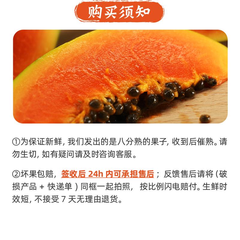 云南红心牛奶木瓜 9斤 图5