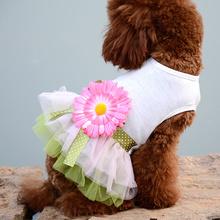 狗狗衣服秋装泰迪比熊贵宾小型犬