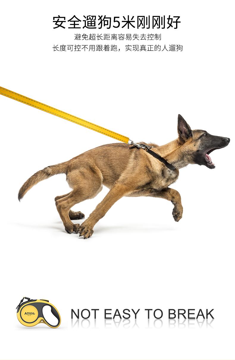 狗狗牵引绳伸缩狗绳子背心式狗炼胸抱婴袋项圈小型犬遛狗绳宠物用品详细照片