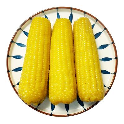 园侬鲜东北即食新鲜甜糯玉米棒真空包装粘黏 21年新黄糯玉米8根装