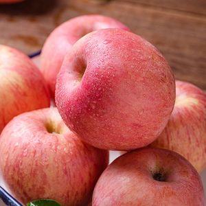 山东烟台红富士苹果10现摘斤新鲜丑水果栖霞脆甜糖心当季整箱包邮