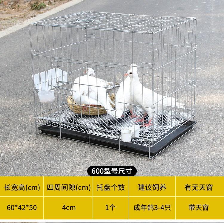鴿子籠養殖籠特大號家用雞籠配對籠鴿子籠兔籠鳥籠子鴿子籠子大號