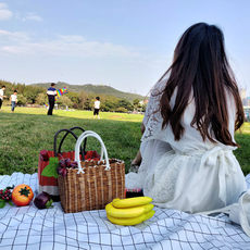 Picnic basket supplies weave basket portable rattan weave blue vegetable garden props food portable ins with tableware
