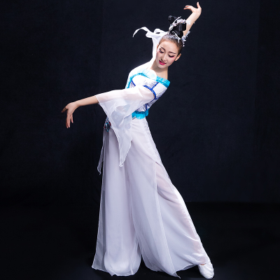 Chinese Folk Dance Costumes Classical dance costume, female training gown, modern dance costume, water sleeve fan umbrella dance adult
