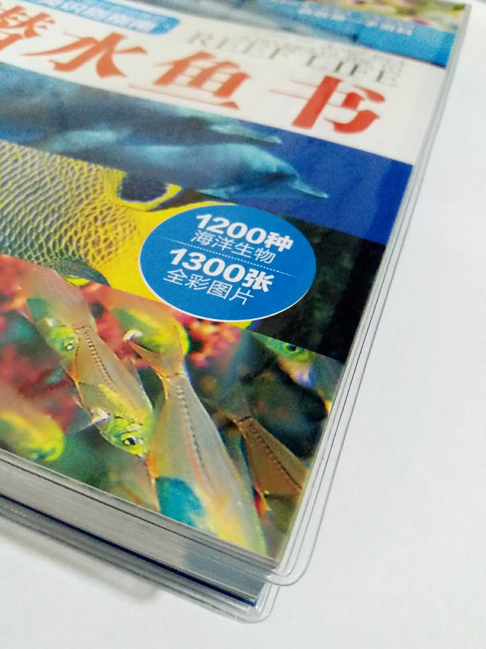 Лодки, Запчасти, Аксессуары Diving the world Diver's Guide To Reef Life 17 Diving the world