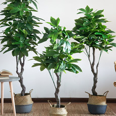 Simulation fortune tree large-scale ground potted tree living room interior window decoration high-grade fake green tree planting