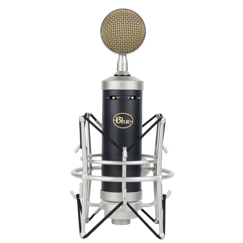 Image result for blue baby bottle condenser microphone