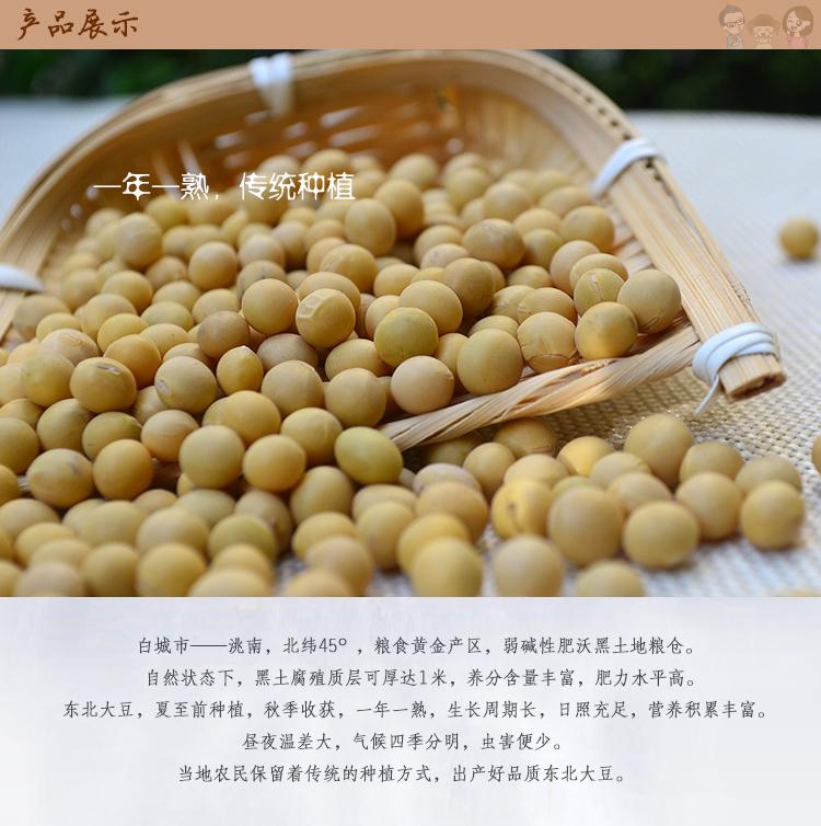 黄豆内3.jpg