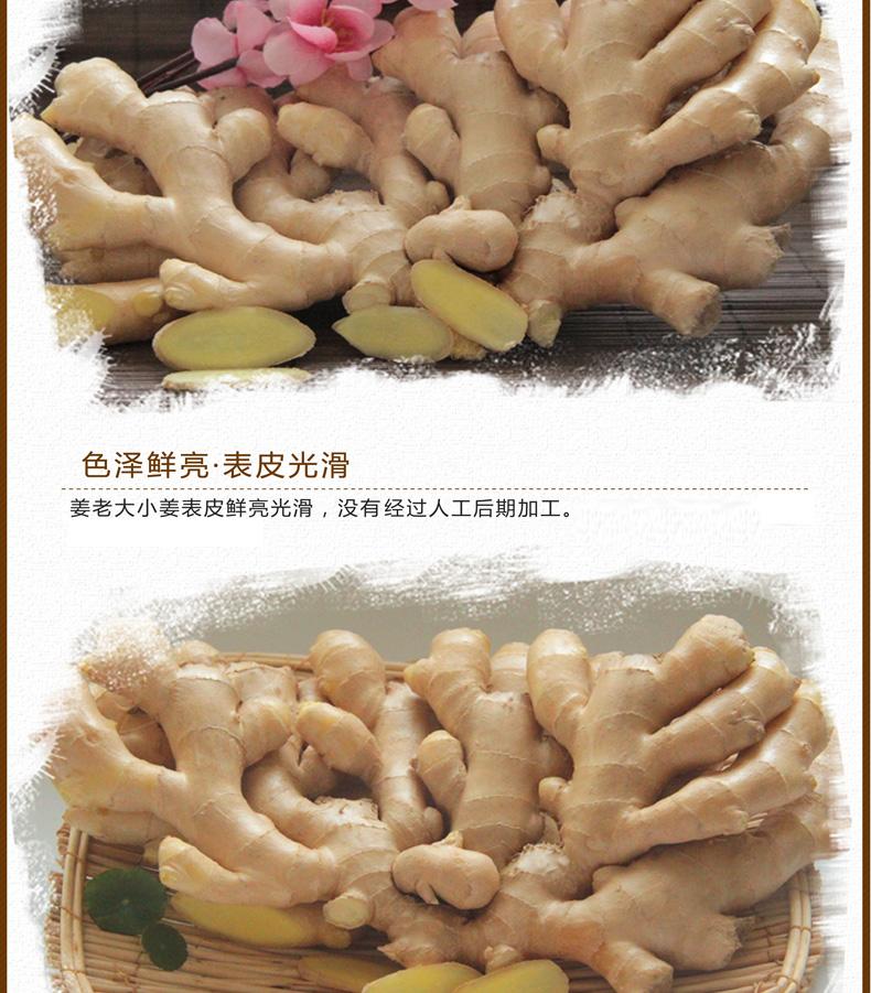 小姜样品3_04.png