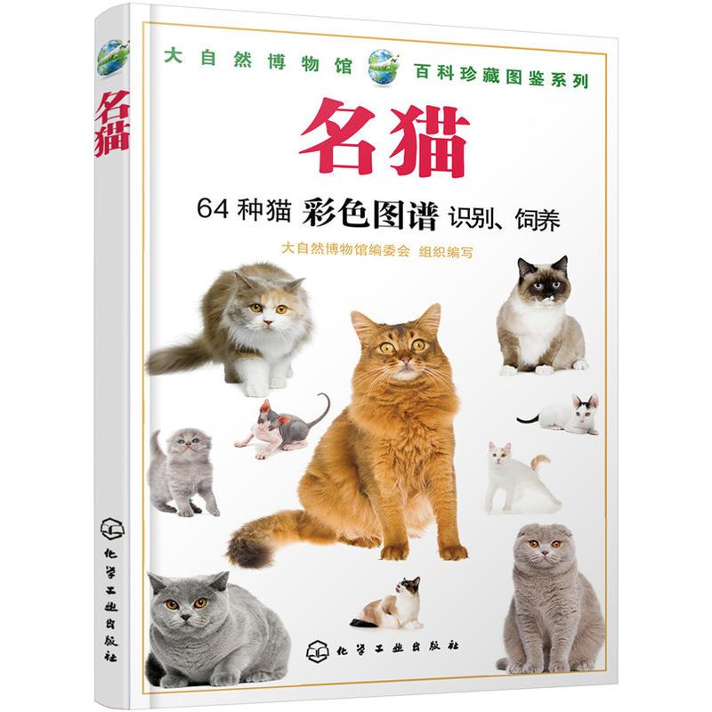 正版 名猫 大...